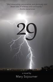 "Book cover for ""29"""
